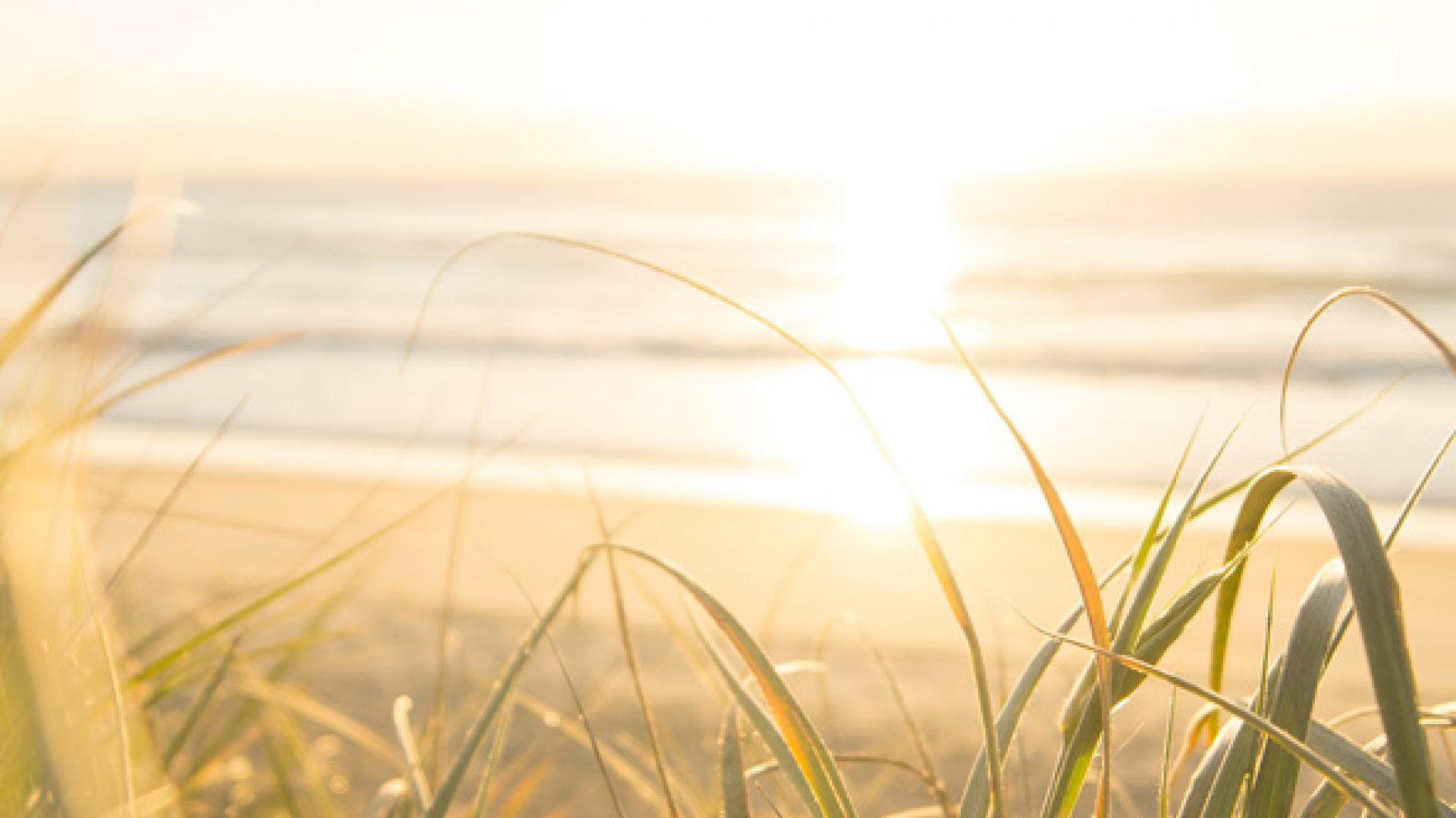 Естествена слънчева светлина